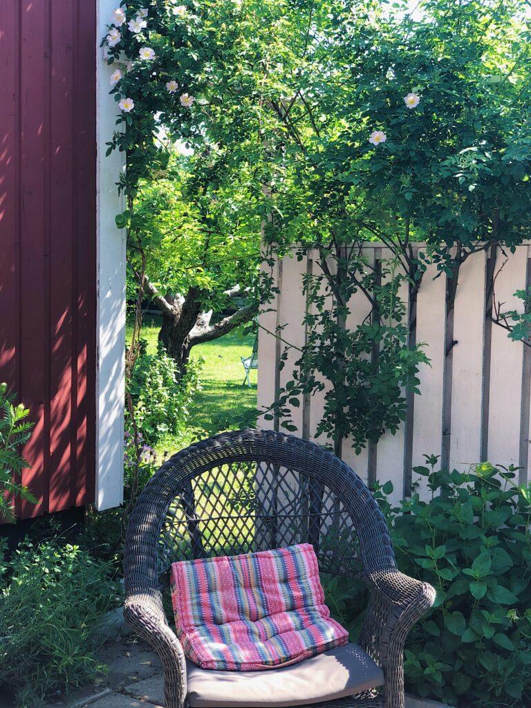 Lummig trädgård Uppsala