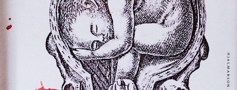 Hanna och Barnsängskriget