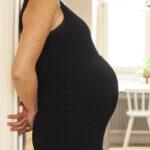 Födandets dynamik